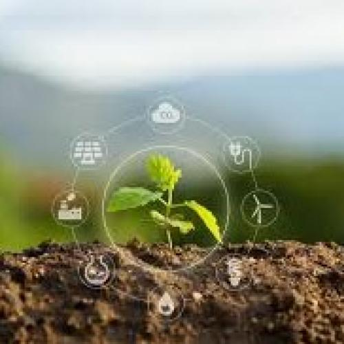 Picture of a seedling surrounding by images of industry, power, transport
